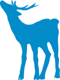 BDF_BLUE-DEER_200X267